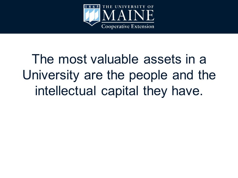 The most valuable assets in a University are the people and the intellectual capital they have.