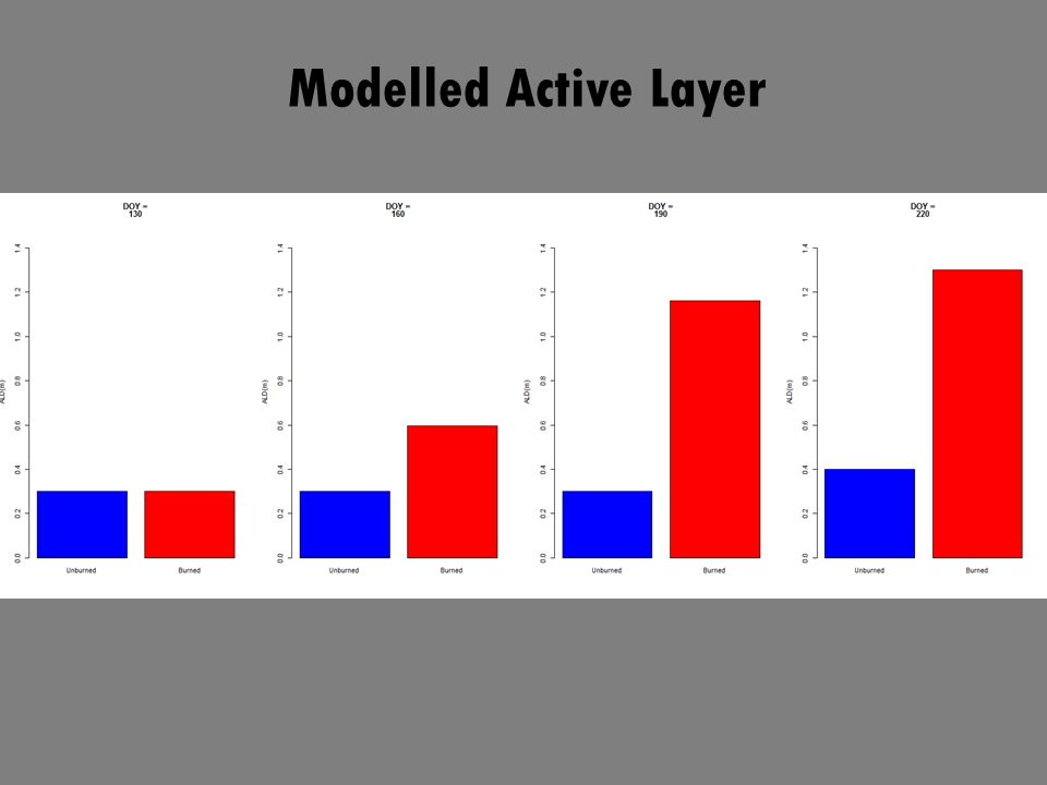 Modelled Active Layer