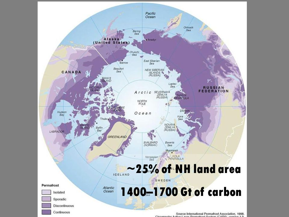 ~25% of NH land area 1400–1700 Gt of carbon