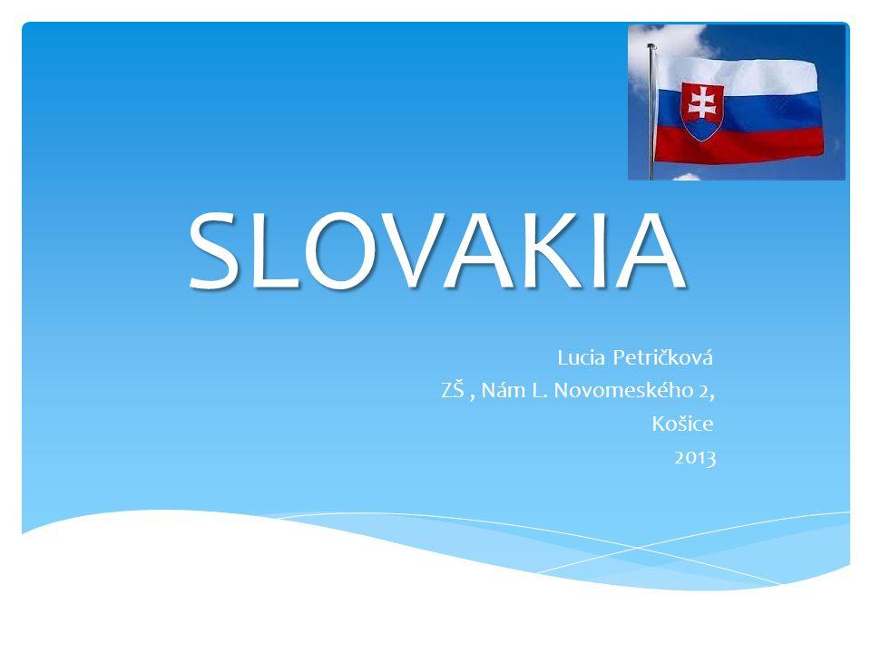 SLOVAKIA Lucia Petričková ZŠ, Nám L. Novomeského 2, Košice 2013