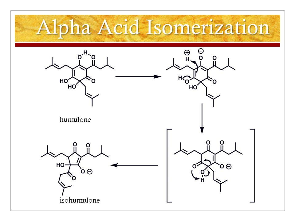 Alpha Acid Isomerization humulone isohumulone