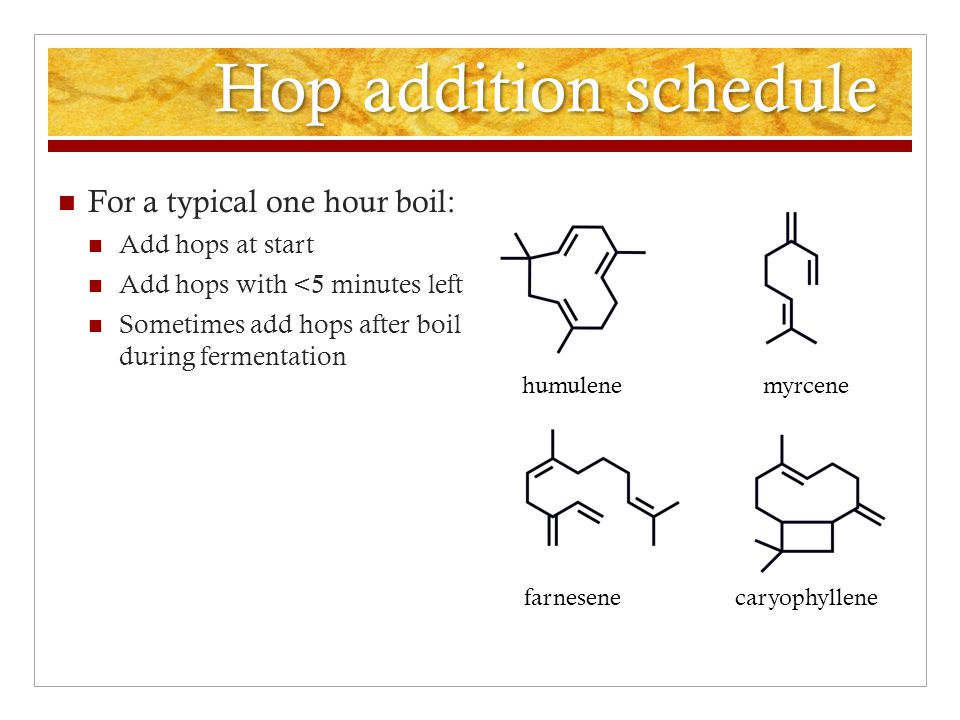 Hop addition schedule For a typical one hour boil: Add hops at start Add hops with <5 minutes left Sometimes add hops after boil during fermentation Aroma-providing hydrocarbons are volatile.