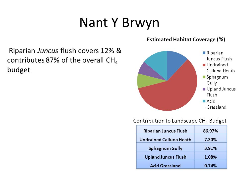 Nant Y Brwyn Riparian Juncus flush covers 12% & contributes 87% of the overall CH 4 budget Contribution to Landscape CH 4 Budget
