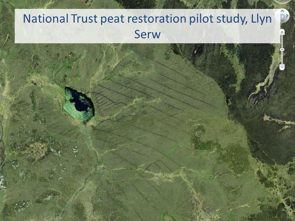 National Trust peat restoration pilot study, Llyn Serw