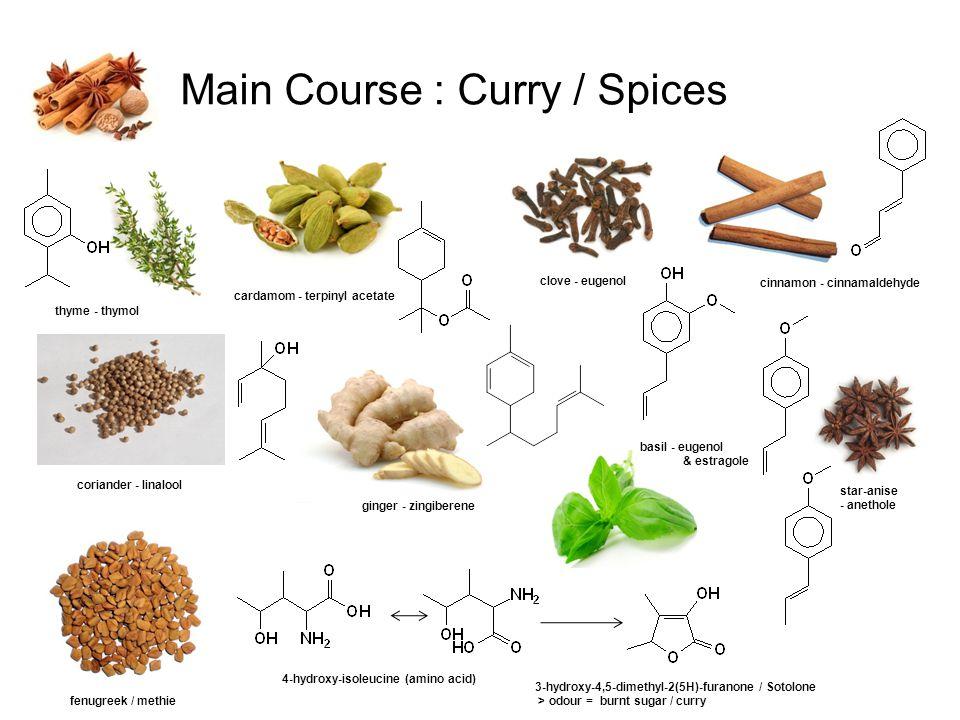 Main Course : Curry / Spices coriander - linalool thyme - thymol cardamom - terpinyl acetate ginger - zingiberene clove - eugenol basil - eugenol & es