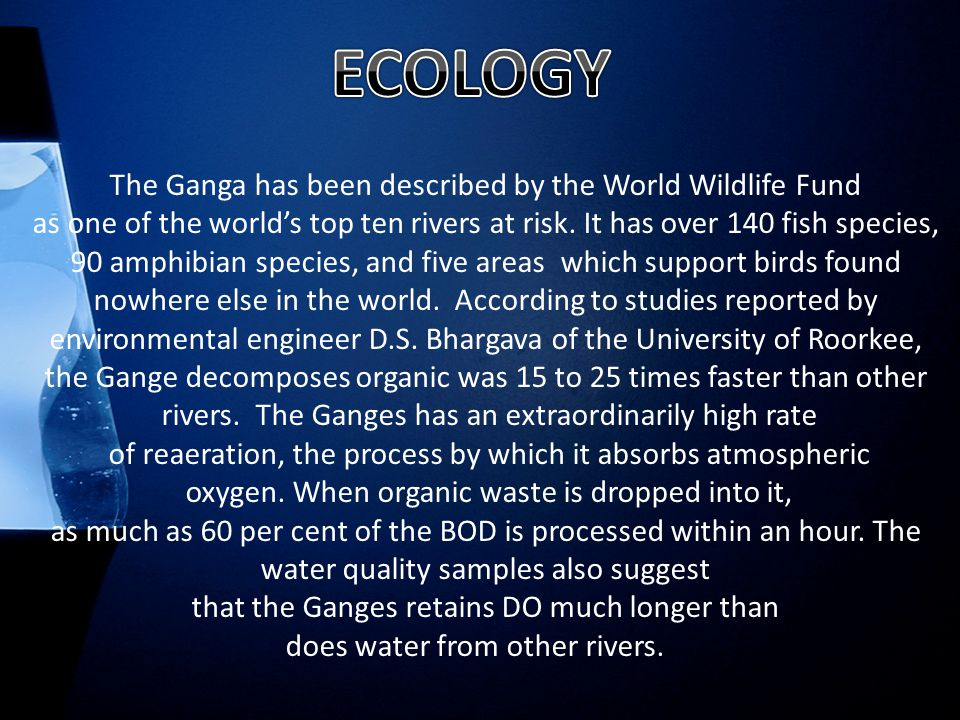 The Ganga has been described by the World Wildlife Fund as one of the world's top ten rivers at risk.