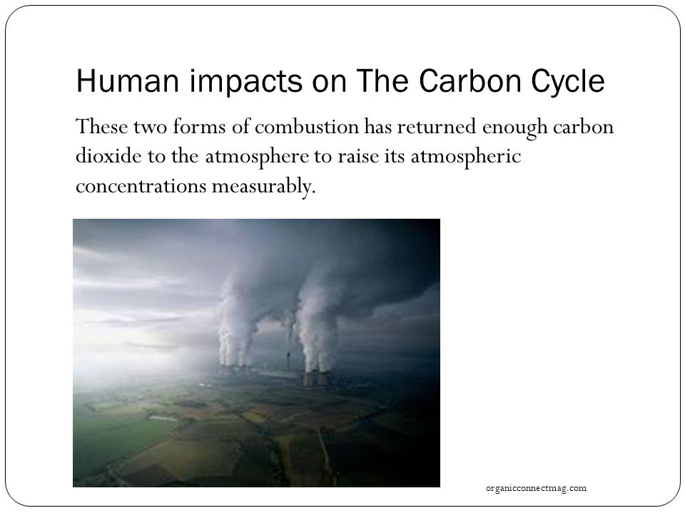 Human impacts on The Carbon Cycle These two forms of combustion has returned enough carbon dioxide to the atmosphere to raise its atmospheric concentrations measurably.