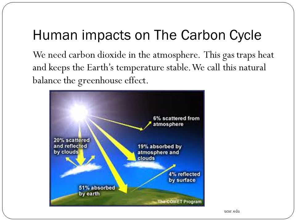 Human impacts on The Carbon Cycle We need carbon dioxide in the atmosphere.