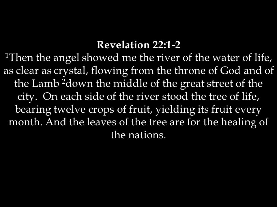 Revelation 22:1-2 1 Then the angel showed me the river of the water of life, as clear as crystal, flowing from the throne of God and of the Lamb 2 down the middle of the great street of the city.