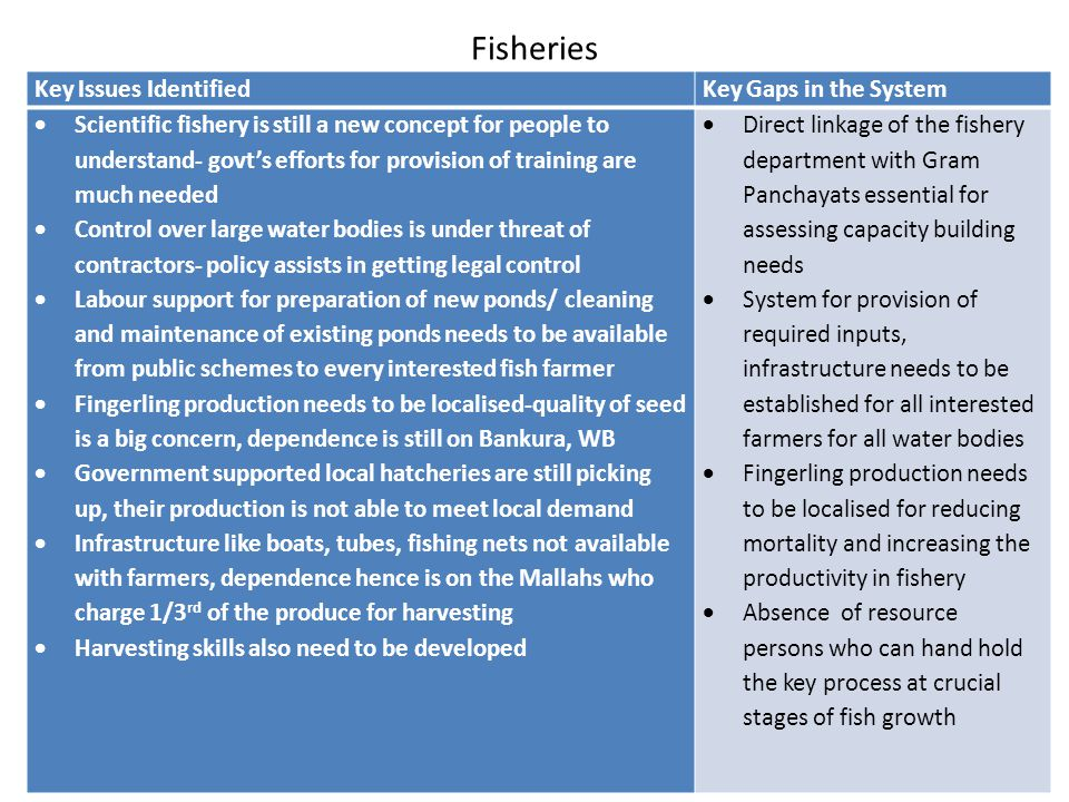 Fisheries Key Issues IdentifiedKey Gaps in the System  Scientific fishery is still a new concept for people to understand- govt's efforts for provisi