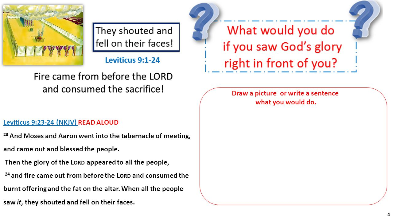 Draw a picture or write a sentence what you would do. Leviticus 9:23-24 (NKJV) READ ALOUD 23 And Moses and Aaron went into the tabernacle of meeting,