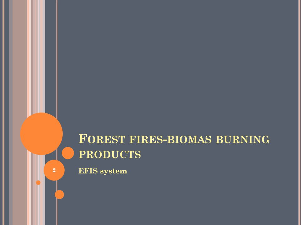 F OREST FIRES - BIOMAS BURNING PRODUCTS EFIS system 2