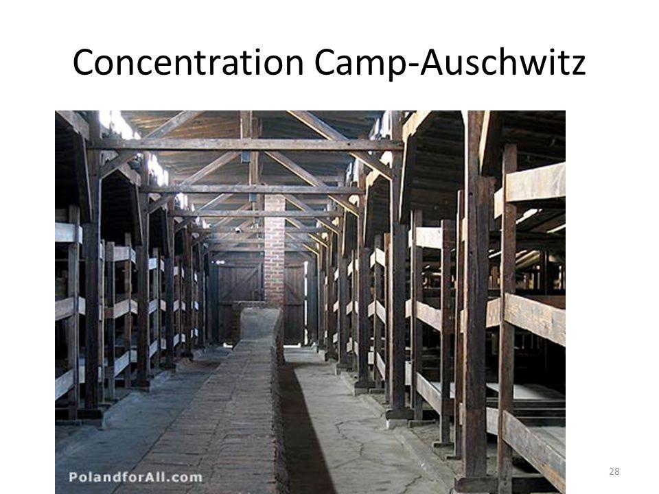 Concentration Camp-Auschwitz 28