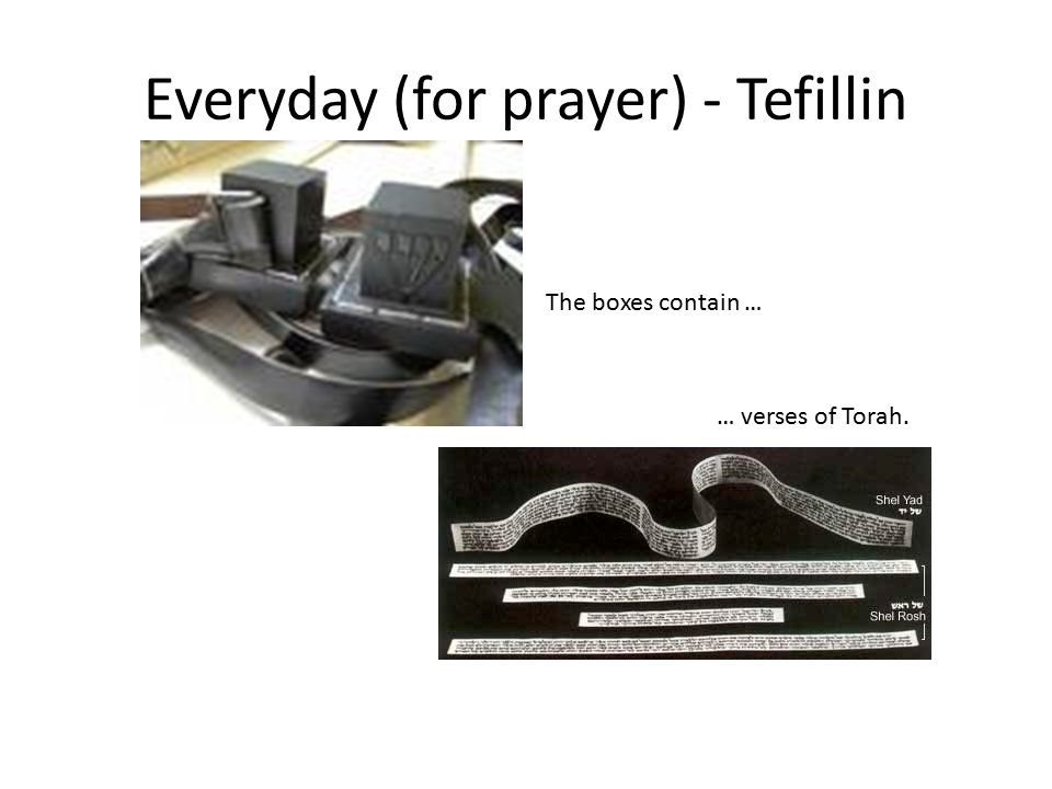 Everyday (for prayer) - Tefillin The boxes contain … … verses of Torah.