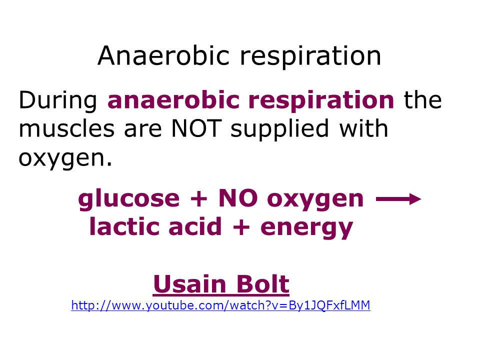Anaerobic respiration Respiration 11 glucose + NO oxygen lactic acid + energy Usain Bolt http://www.youtube.com/watch?v=By1JQFxfLMM During anaerobic r