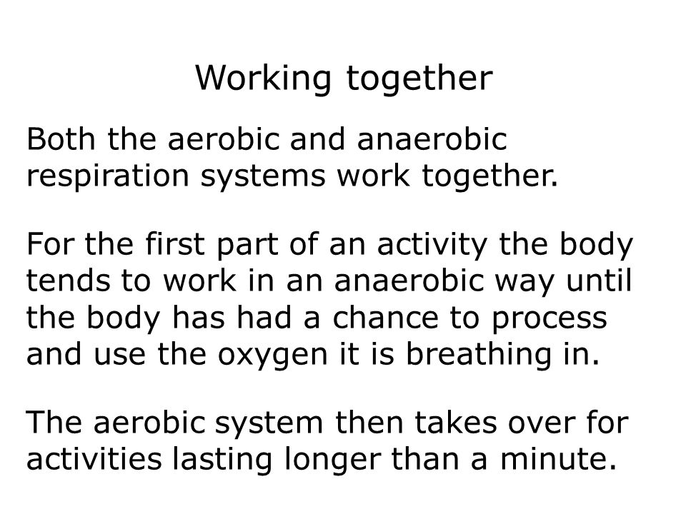 Working together Both the aerobic and anaerobic respiration systems work together.