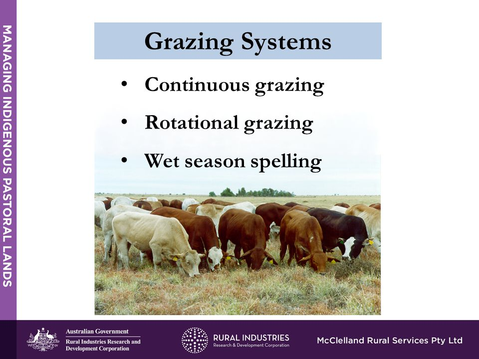 Continuous grazing Rotational grazing Wet season spelling Grazing Systems