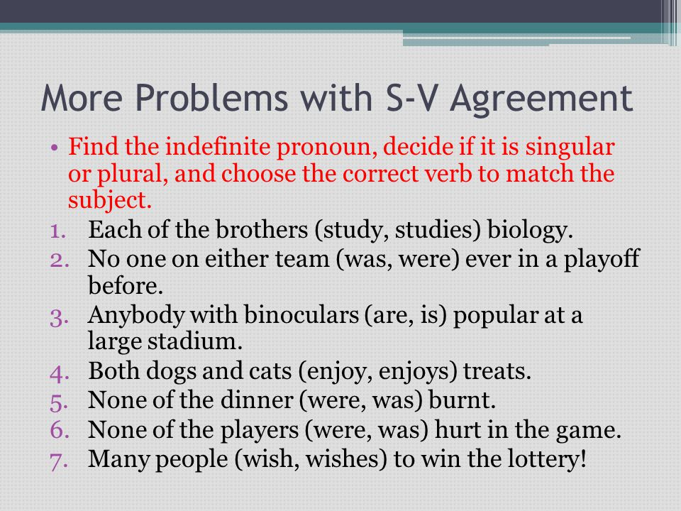 More Problems with S-V Agreement Find the indefinite pronoun, decide if it is singular or plural, and choose the correct verb to match the subject. 1.