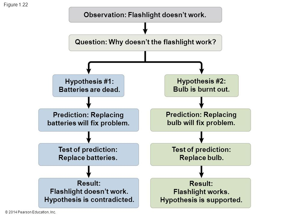 © 2014 Pearson Education, Inc. Figure 1.22 Observation: Flashlight doesn't work. Question: Why doesn't the flashlight work? Hypothesis #1: Batteries a