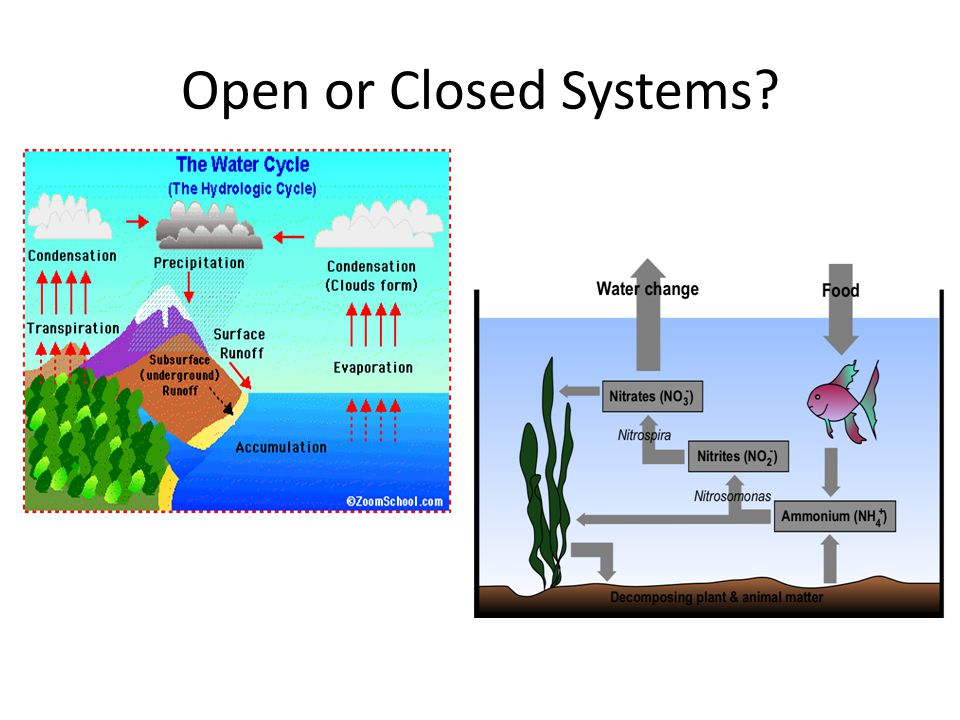Open or Closed Systems