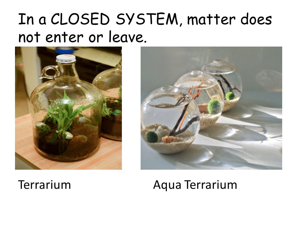 In a CLOSED SYSTEM, matter does not enter or leave. TerrariumAqua Terrarium