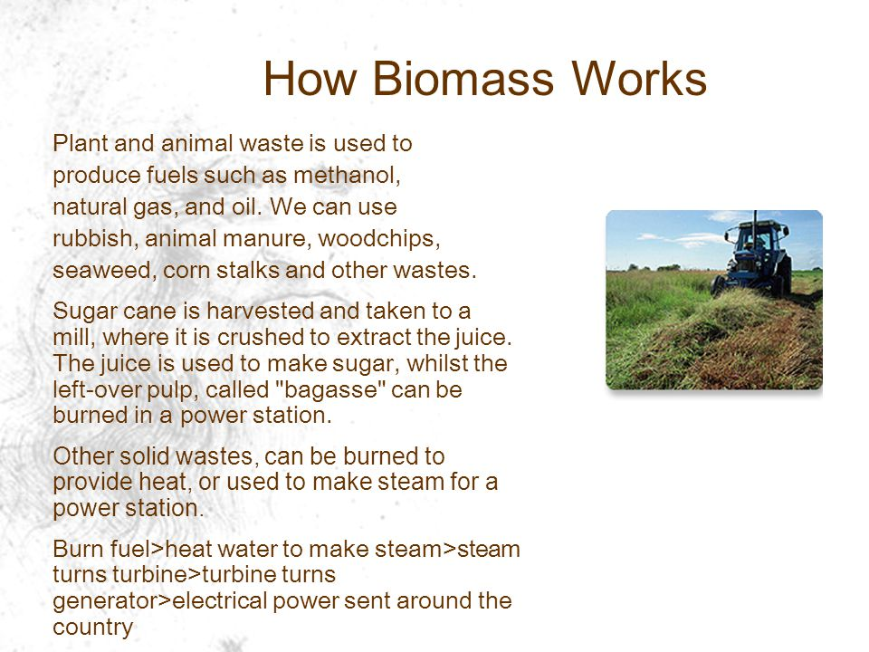Plant and animal waste is used to produce fuels such as methanol, natural gas, and oil.