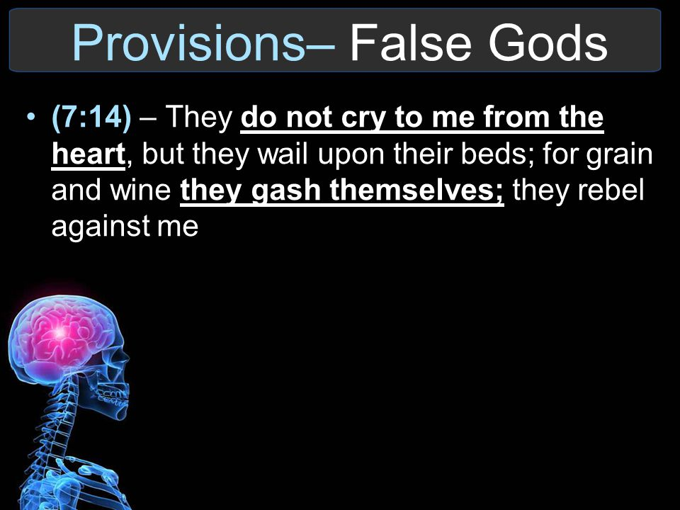 Provisions– False Gods (7:14) – They do not cry to me from the heart, but they wail upon their beds; for grain and wine they gash themselves; they reb