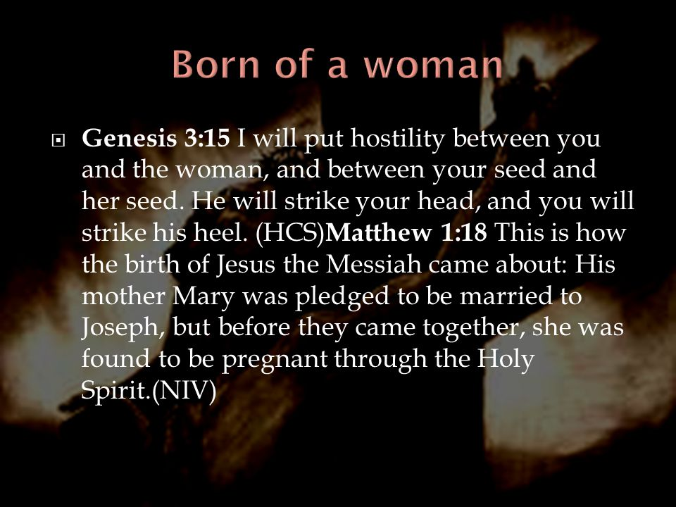  Genesis 3:15 I will put hostility between you and the woman, and between your seed and her seed. He will strike your head, and you will strike his h
