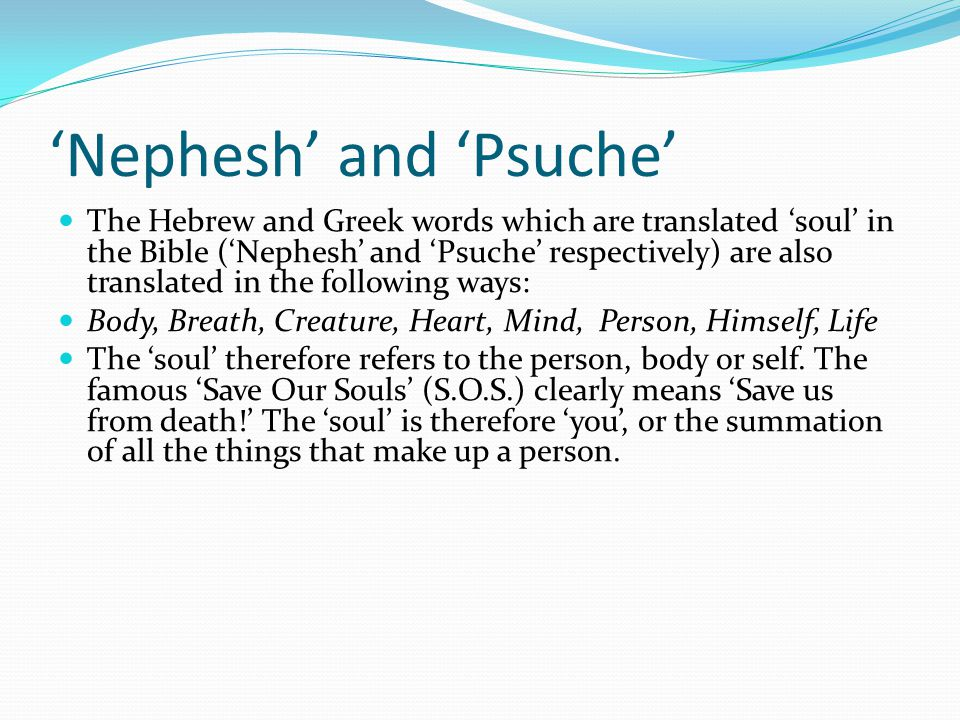'Nephesh' and 'Psuche' The Hebrew and Greek words which are translated 'soul' in the Bible ('Nephesh' and 'Psuche' respectively) are also translated i