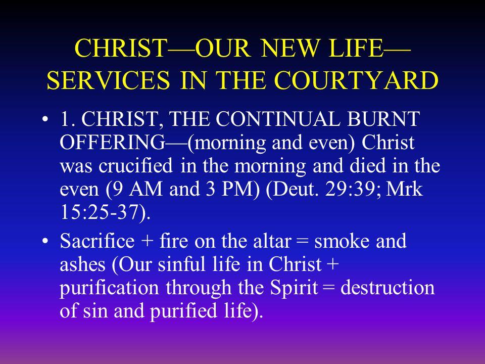 Christ, our Sacrifice for Sin 2.