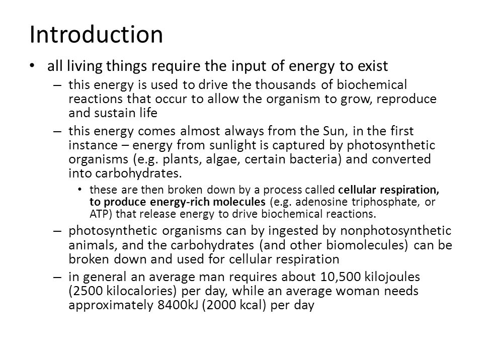 all living things require the input of energy to exist – this energy is used to drive the thousands of biochemical reactions that occur to allow the organism to grow, reproduce and sustain life – this energy comes almost always from the Sun, in the first instance – energy from sunlight is captured by photosynthetic organisms (e.g.