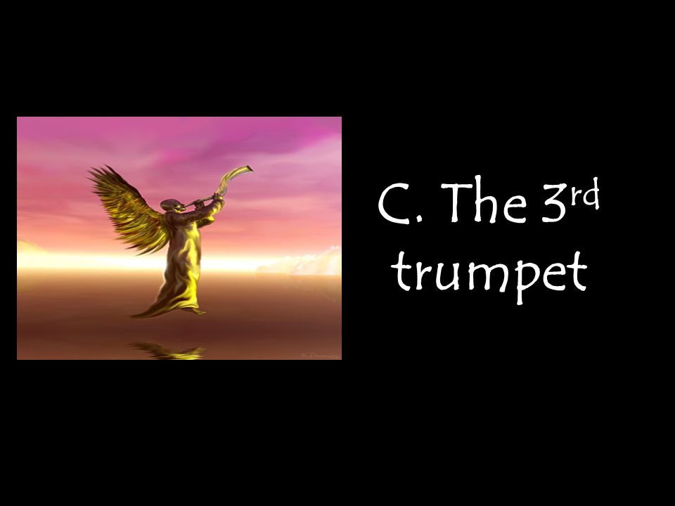 C. The 3 rd trumpet