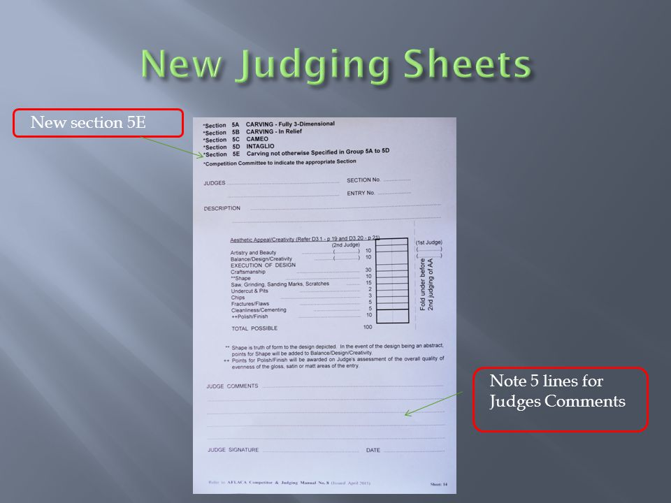 Note 5 lines for Judges Comments New section 5E