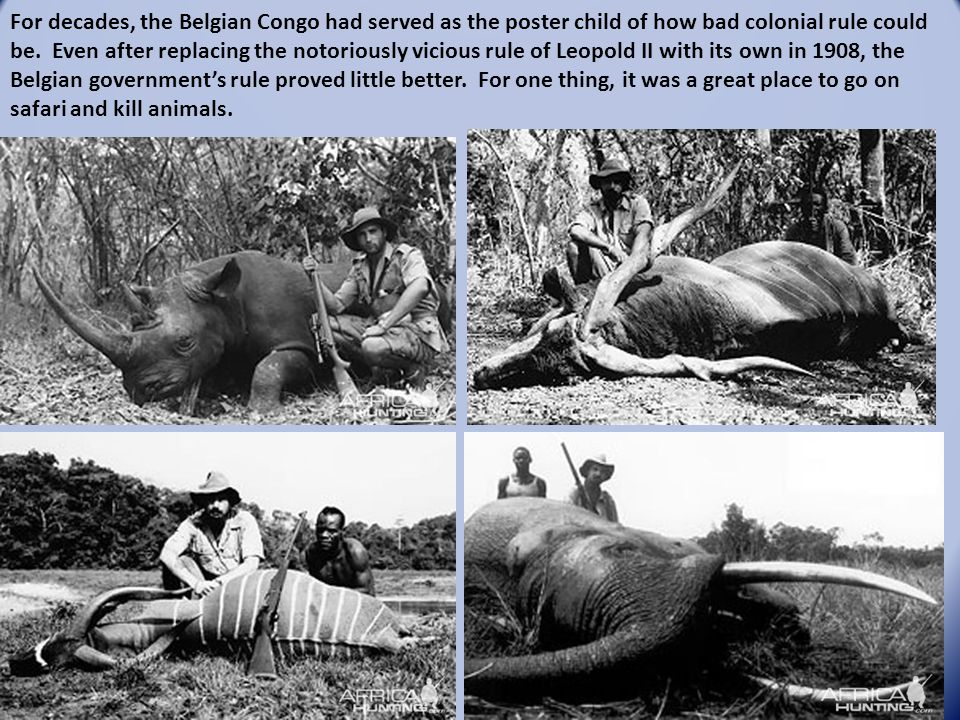 For decades, the Belgian Congo had served as the poster child of how bad colonial rule could be. Even after replacing the notoriously vicious rule of