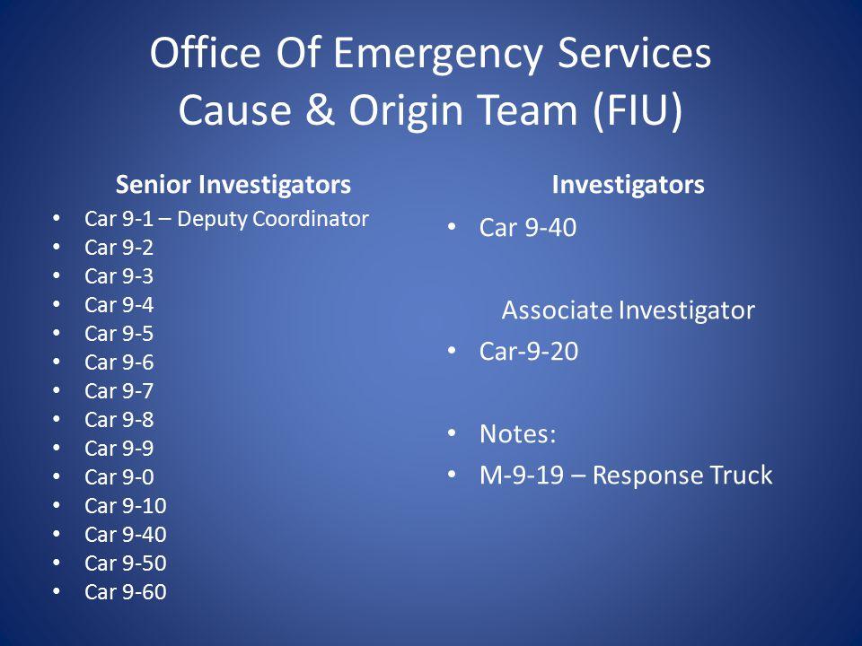 Deputy Fire Coordinator Office Of Emergency Services Deputy Coordinator Fire Investigation Unit Cause & Origin Team – 16 Investigator – 12 Senior Inve