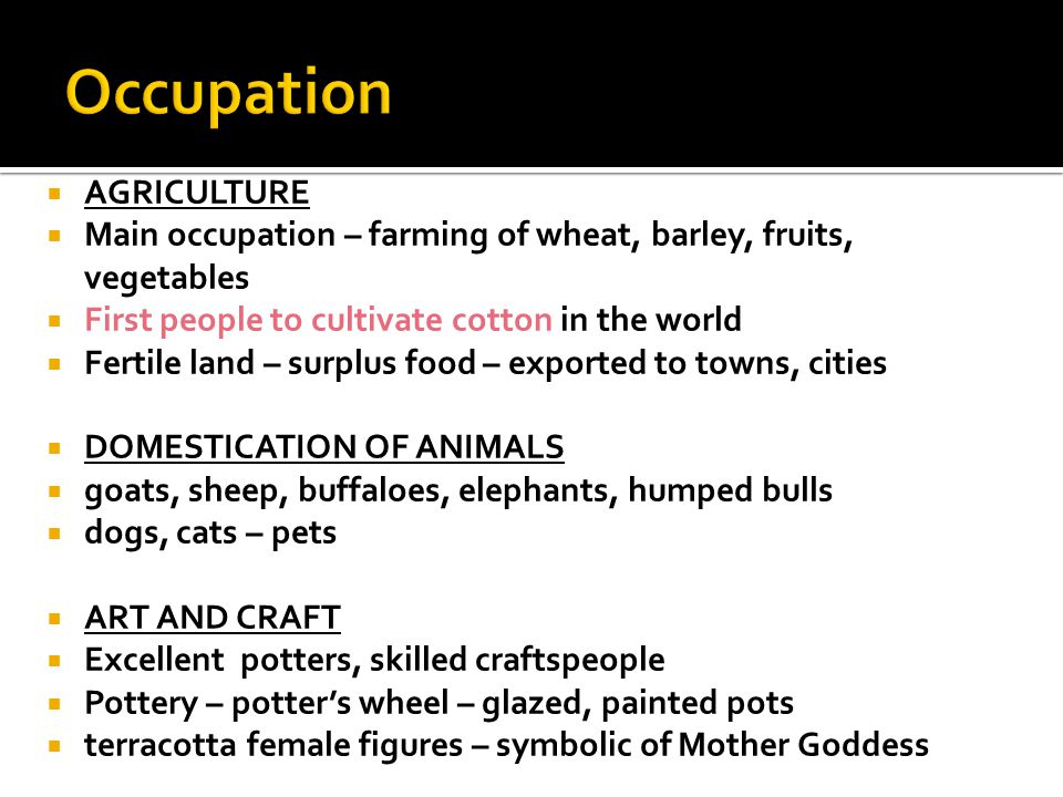  AGRICULTURE  Main occupation – farming of wheat, barley, fruits, vegetables  First people to cultivate cotton in the world  Fertile land – surplus food – exported to towns, cities  DOMESTICATION OF ANIMALS  goats, sheep, buffaloes, elephants, humped bulls  dogs, cats – pets  ART AND CRAFT  Excellent potters, skilled craftspeople  Pottery – potter's wheel – glazed, painted pots  terracotta female figures – symbolic of Mother Goddess