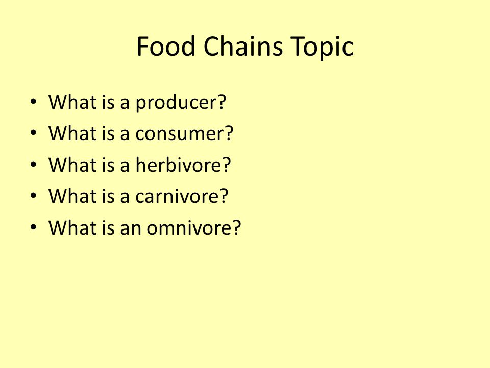 Food Chains Topic What is a producer. What is a consumer.