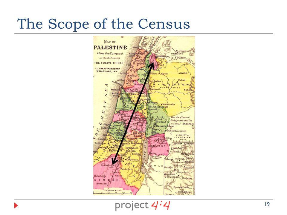 The Scope of the Census 19
