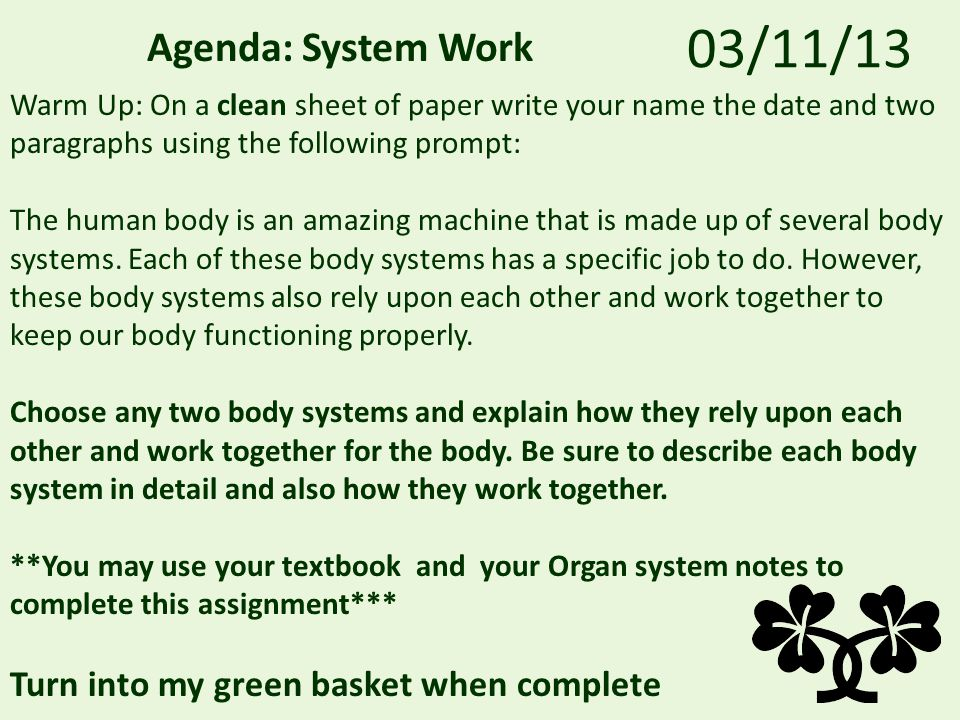 03/11/13 Agenda: System Work Warm Up: On a clean sheet of paper write your name the date and two paragraphs using the following prompt: The human body is an amazing machine that is made up of several body systems.