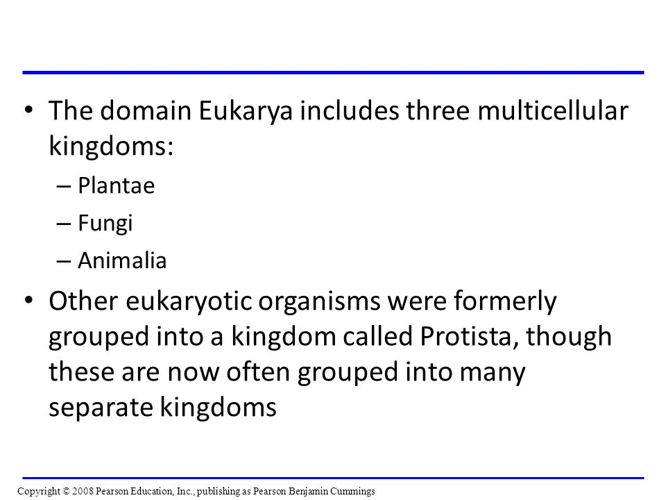 The domain Eukarya includes three multicellular kingdoms: – Plantae – Fungi – Animalia Other eukaryotic organisms were formerly grouped into a kingdom called Protista, though these are now often grouped into many separate kingdoms Copyright © 2008 Pearson Education, Inc., publishing as Pearson Benjamin Cummings