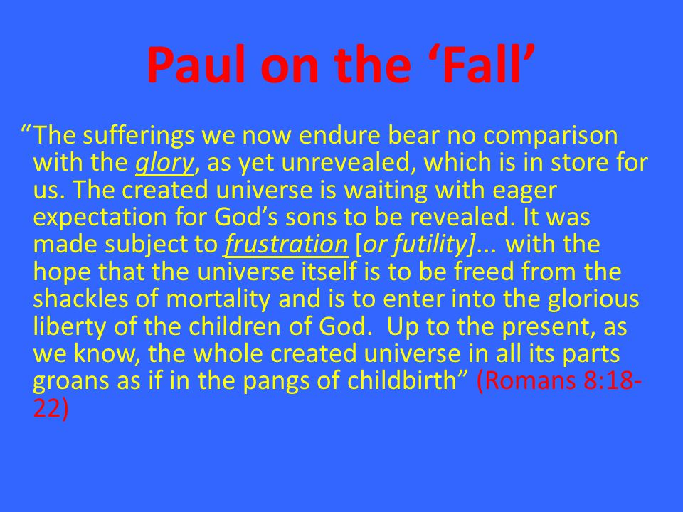 Paul on the 'Fall' The sufferings we now endure bear no comparison with the glory, as yet unrevealed, which is in store for us.