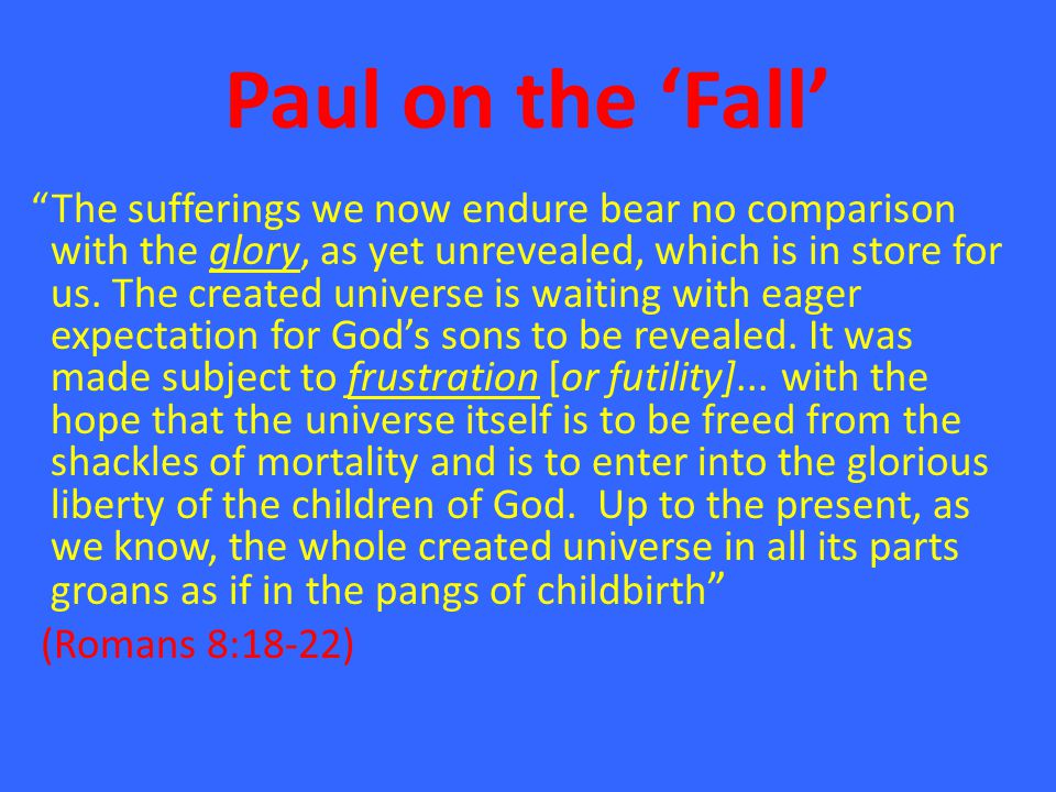 """Paul on the 'Fall' """"The sufferings we now endure bear no comparison with the glory, as yet unrevealed, which is in store for us. The created universe"""