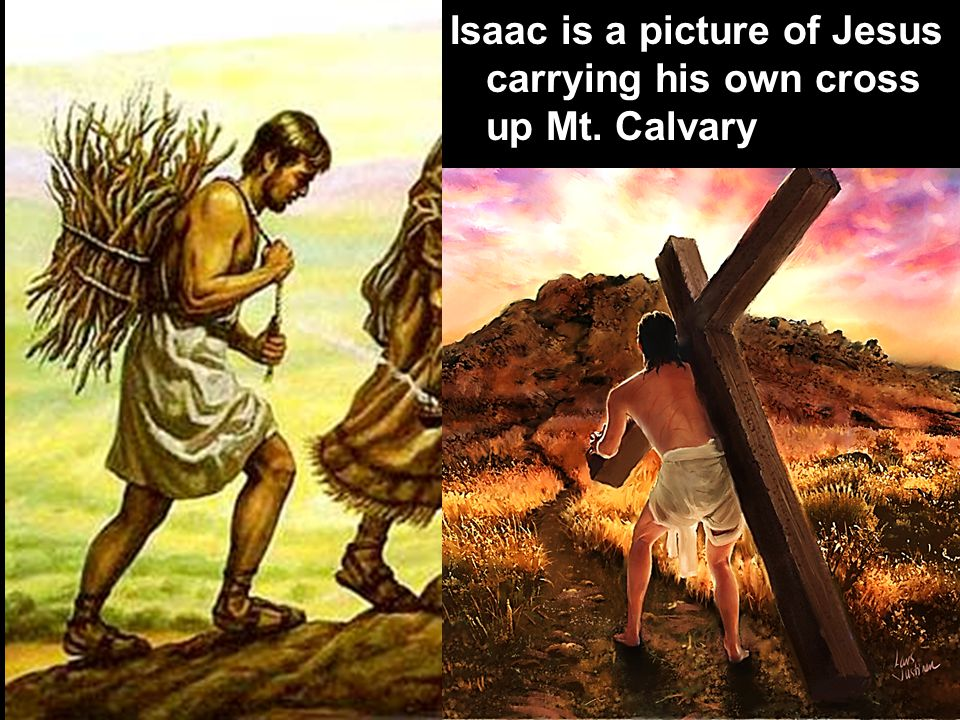 Isaac is a picture of Jesus carrying his own cross up Mt. Calvary