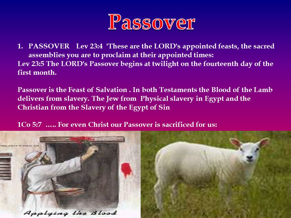 1.PASSOVER Lev 23:4 'These are the LORD's appointed feasts, the sacred assemblies you are to proclaim at their appointed times: Lev 23:5 The LORD's Pa