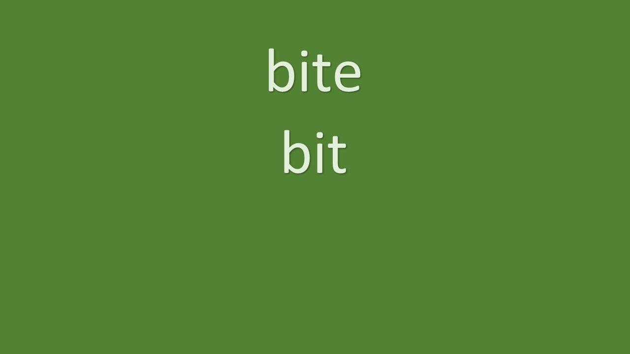 bite bit