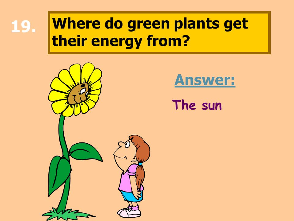 19. Where do green plants get their energy from? Answer: The sun
