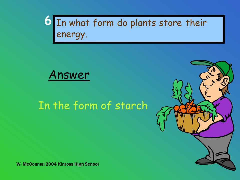 in which form do plants store energy
