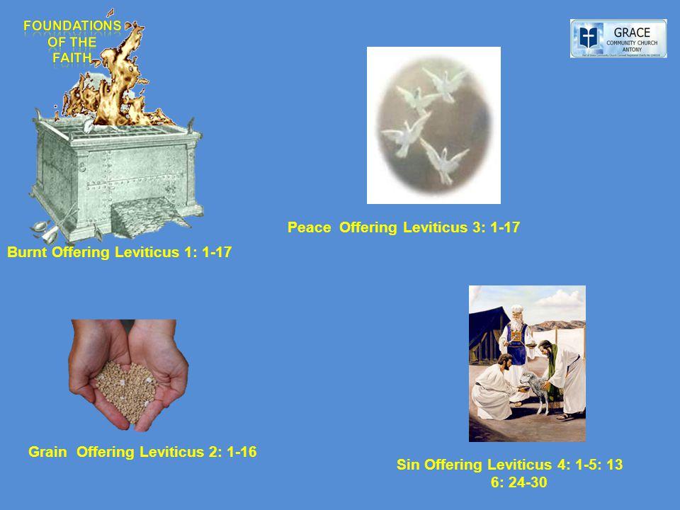 Burnt Offering Leviticus 1: 1-17 Grain Offering Leviticus 2: 1-16 Peace Offering Leviticus 3: 1-17 Sin Offering Leviticus 4: 1-5: 13 6: 24-30