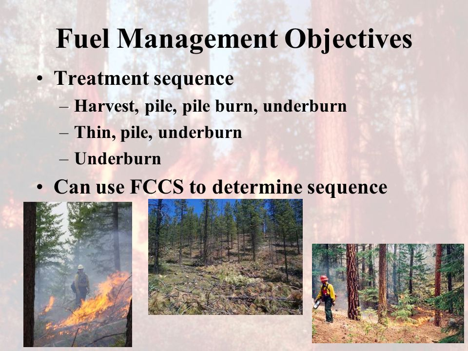 Fuel Management Objectives Treatment sequence –Harvest, pile, pile burn, underburn –Thin, pile, underburn –Underburn Can use FCCS to determine sequence