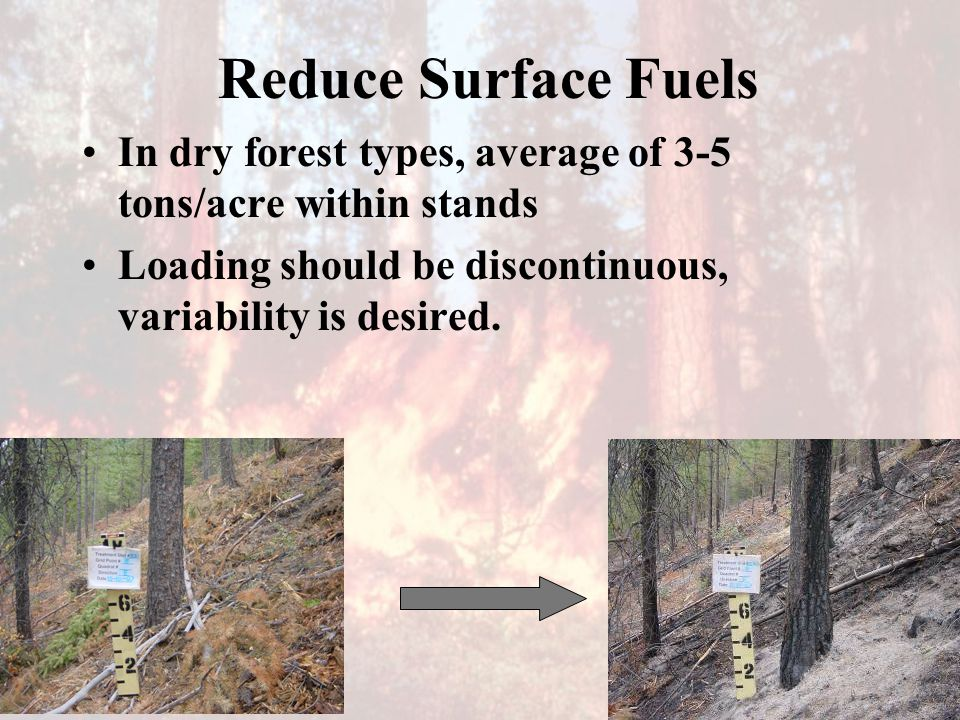 Reduce Surface Fuels In dry forest types, average of 3-5 tons/acre within stands Loading should be discontinuous, variability is desired.
